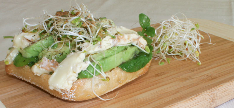 Smoked goat brie cheese sandwich with water crest salad and avocado