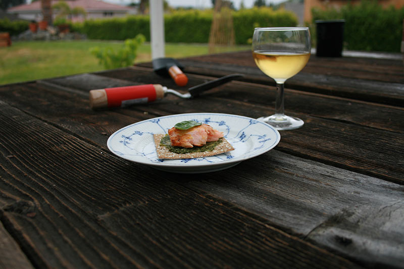 Recipe: Grilled Salmon Cracker