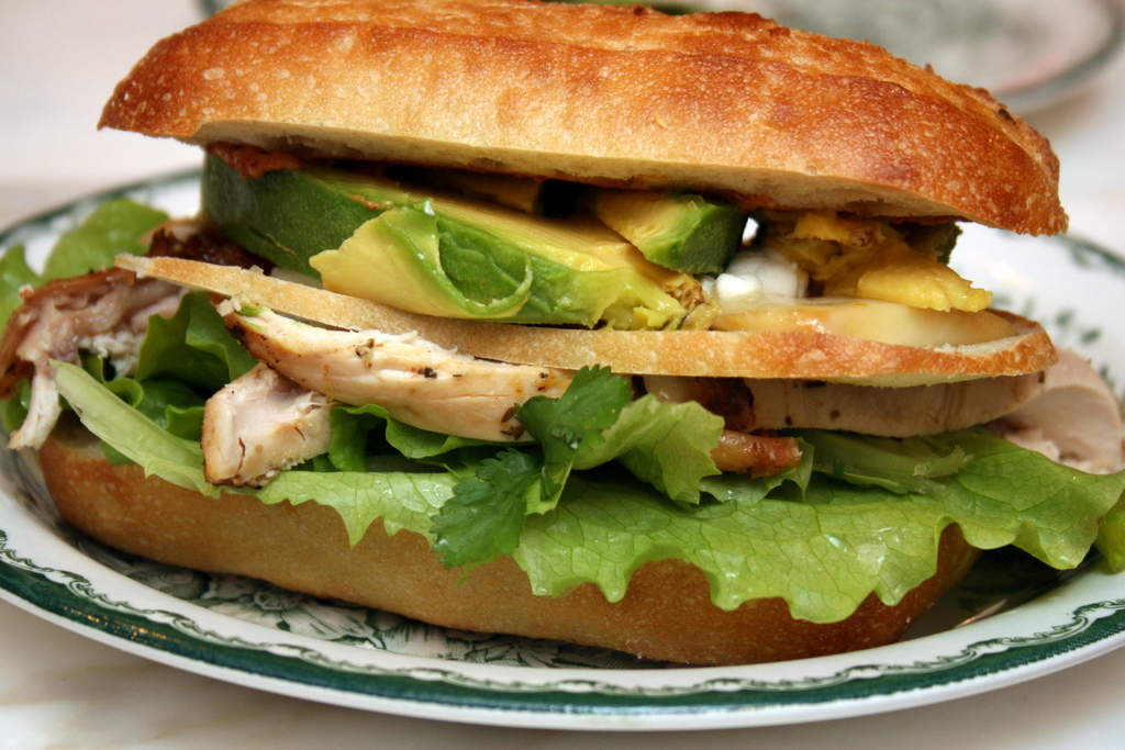 Chipotle Grilled Chicken With Avocado Sandwich Recipes — Dishmaps